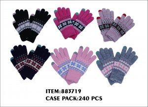 LADIES WINTER GLOVE WITH TOUCH 2