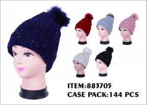 LADIES WINTER HAT 12DZ/CTN